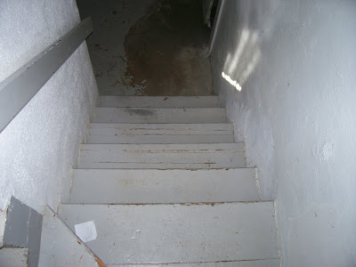basement stairs looking down. Fixing up my old stairs  Your tips requested OHW View topic