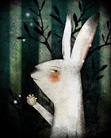 bianconiglio, coniglio bianco