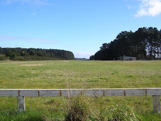 NZFP - Foxpine Airpark