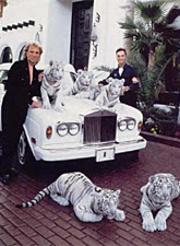 Siegfried & Roy and their white tigers