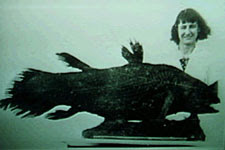 Marjorie Courtenay-Latimer and her coelacanth in the East London Museum