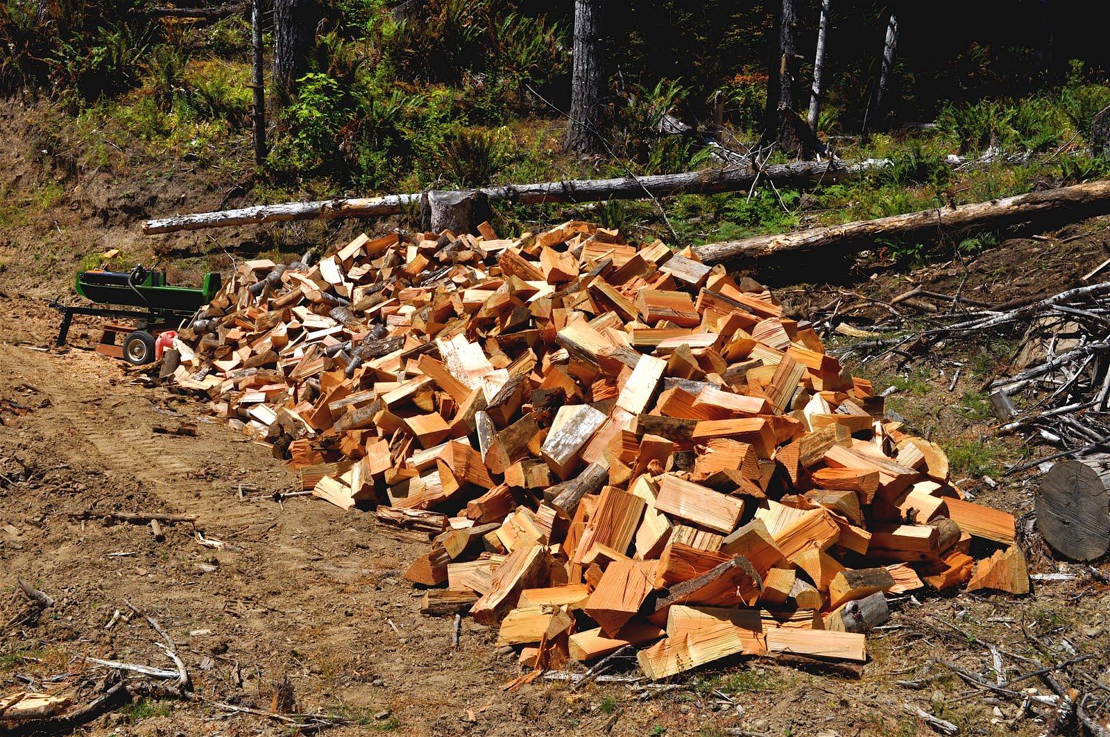 Pile It On : Luann kessi wood shrinks