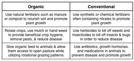 Organic Vs Processed Food Essay