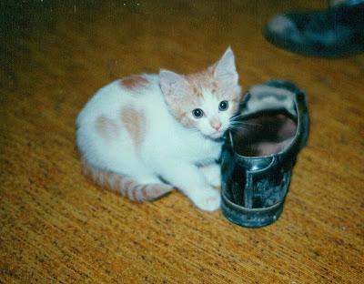 Cissy 1991