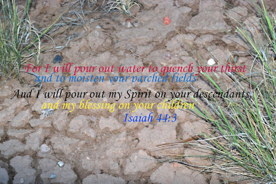 Extinguish My Drought, Lord