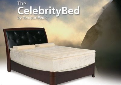 Store Of Modern Furniture In Nyc Blog Celebrity Bed By