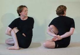yogi sticks january 2011