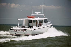 The Sawyer