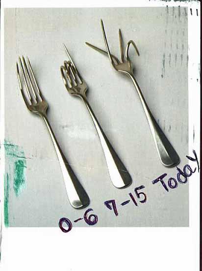 [3+Forks.jpg]