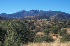 Santa Rita Mountains in Arizona