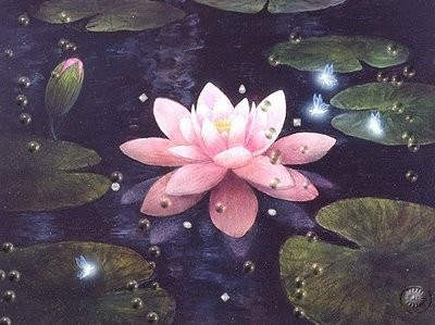 [flor_de_lotus1.jpg]