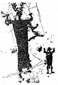 marta & lucia: Le streghe della Valcamonica