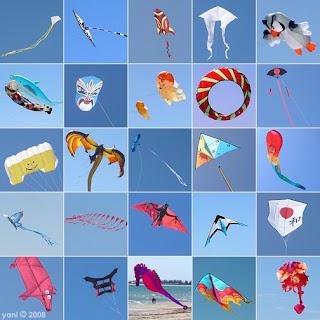 kite festival 2008