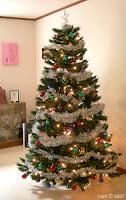 finshed tree 2007