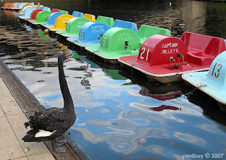 swan and paddleboats 2007