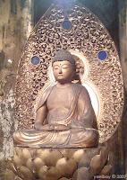 buddha 2007