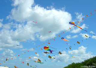 sky full of kites 2007