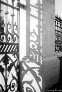 shadows 2002