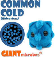 fluffy common cold