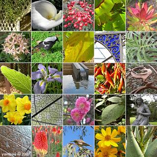botanic 2007