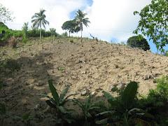 Denuded mountain of Budlaan, Cebu City.