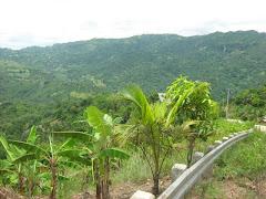 The way to Maraag via Bonbon, Cebu City.