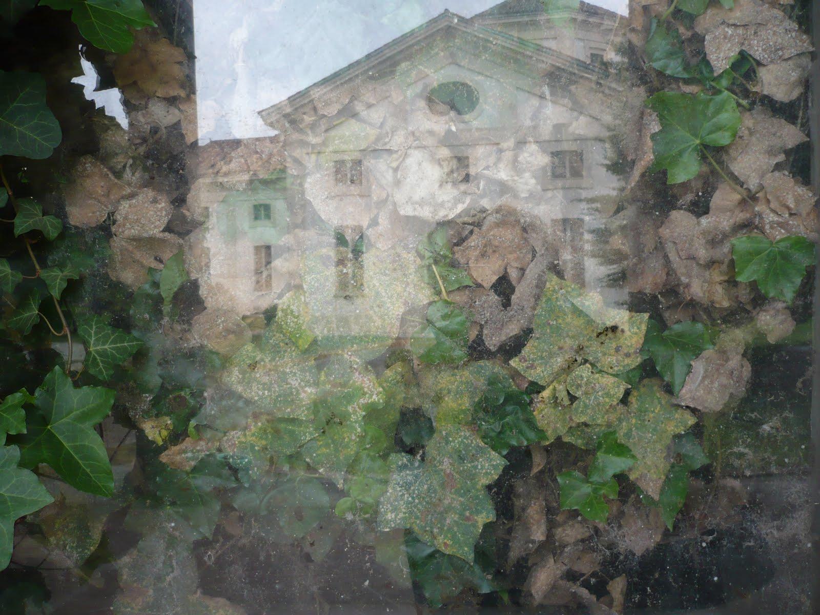 Montagna Legnami Alte Ceccato acquarius racconti liquidi con panna: 2010