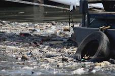 La contaminacion del riachuelo