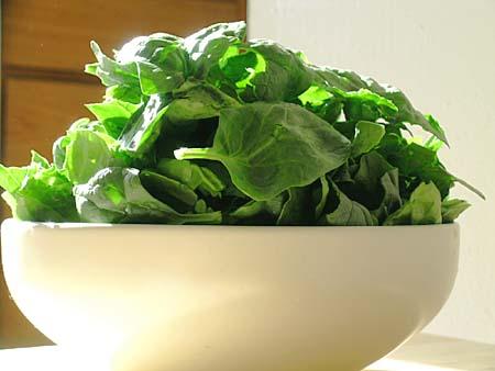 [spinach1.jpg]