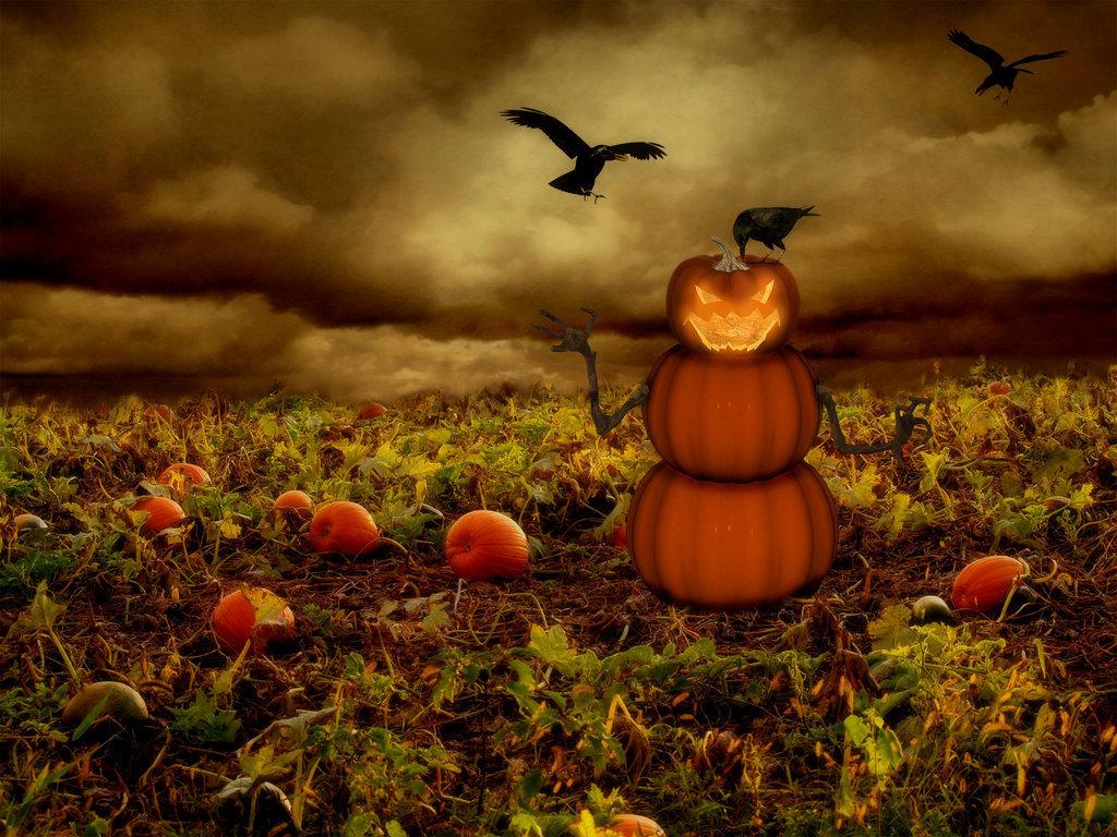 halloween pictures wallpaper pumpkin - photo #17