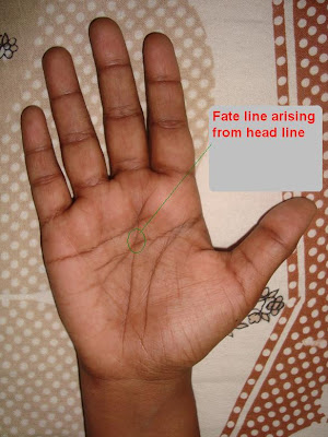 palmistry: Know your Future: palm reading: job, marriage and