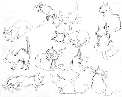 Gallery For gt Cat Poses Drawing