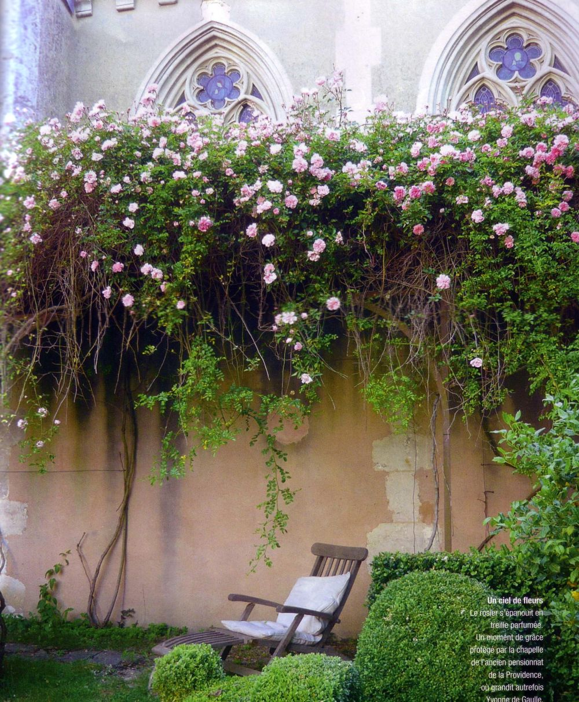 The Landscape Gardener: She Moves The Furniture: Courtyard Gardens