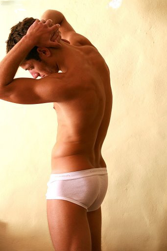 erezione dellorgano genitale maschile