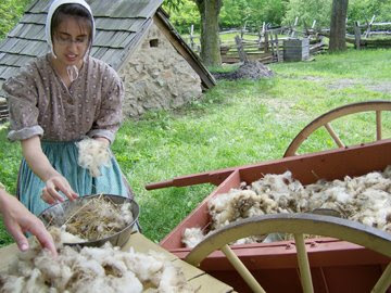 natural dye for wool