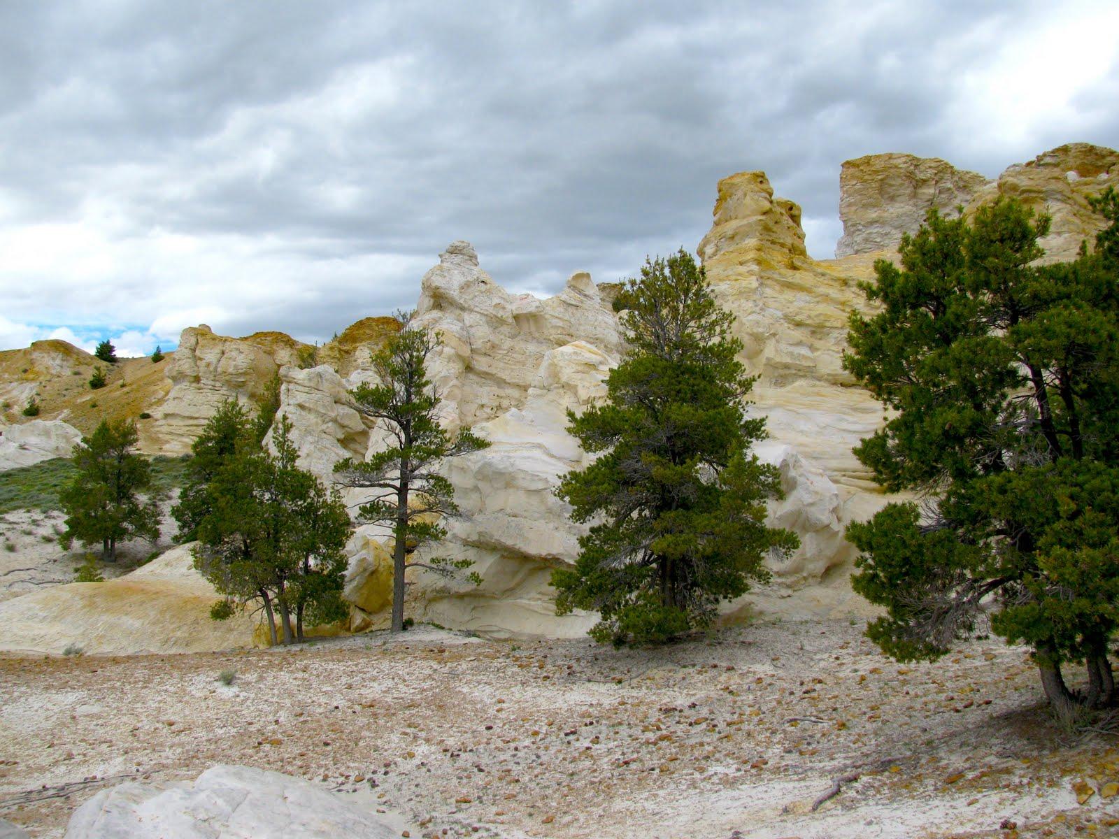 Thermopolis Wyoming Castle Gardens Petroglyphs