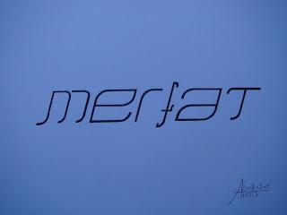 Merfat2