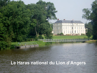 girmont le lion d 39 angers le haras national. Black Bedroom Furniture Sets. Home Design Ideas