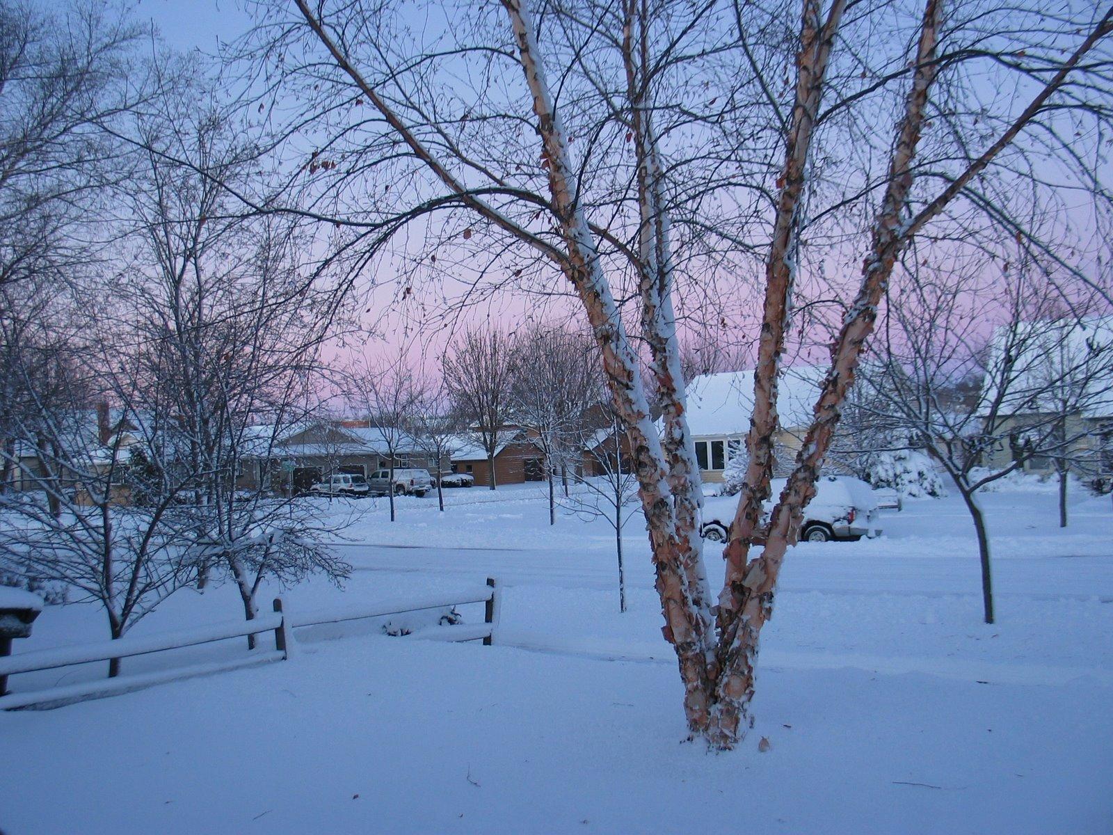 [snow1.jpg]
