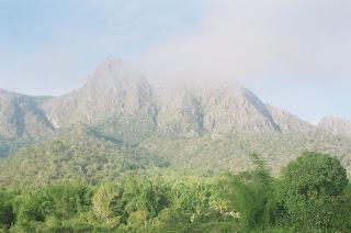 Jungle mein Mangal 'Mudumalai' – Quiet and Peaceful