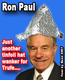funny tin foil hat