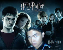 The Ward Potter