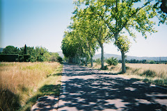 Road to Fontaine de Vaucluse