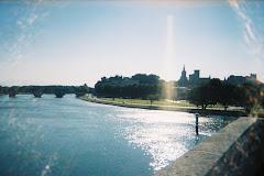 Pont d'Avignon in the Morning