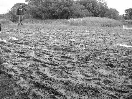 [Mud.jpg]