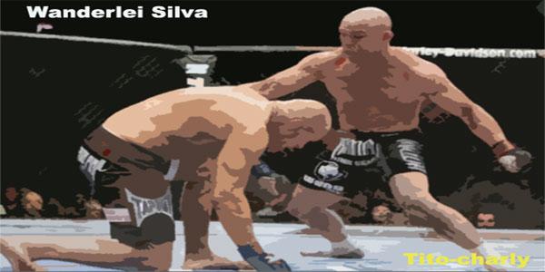 Wanderlei silva, MMA en estado puro.