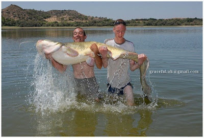 Unbelievable Pictures Of Gaint Fish
