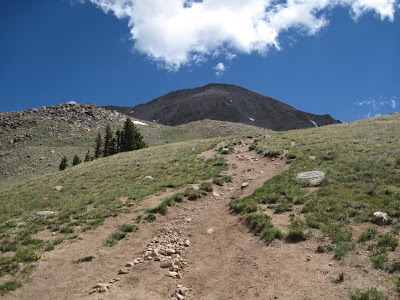 The trail towards Mt. Yale