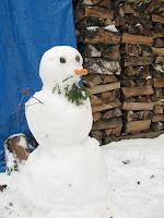 LittleBirder's First Snowman