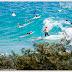 Día sin surfing en el Quiksilver Pro